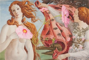 Pink Cosmos and Botticelli
